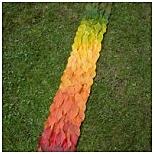 leaf-fade