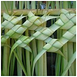 palm-leaf-weaving