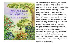 Backyard Birds of Puget Sound